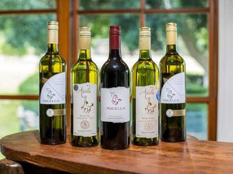 Ascella Organic Wines